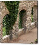Old Wall In  Praga Canvas Print