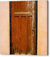 Old Weathered Door Canvas Print