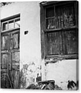 old weathered wooden door entrance to abandoned house 18 with window and cracked stucco walls in Los Banquitos Tenerife Canary Islands Spain Canvas Print
