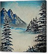 Old Winter Canvas Print