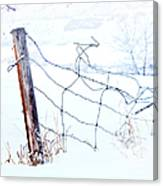 Old Wire Fence Canvas Print