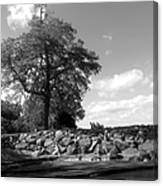 Old Woman Creek - Black And White Canvas Print