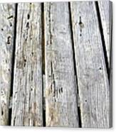 Old Wood Texture Canvas Print