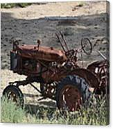 Old Work Horse Canvas Print