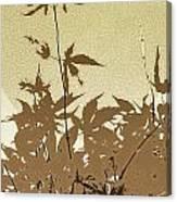 Olive And Brown Haiku Canvas Print