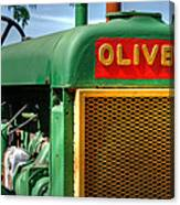 Oliver Canvas Print