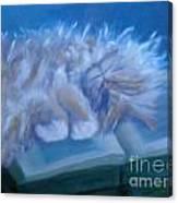Oliver Sleeping Canvas Print