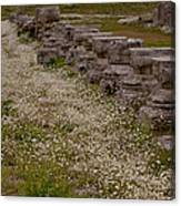 Olympia Ruins And Wild Flowers   #9678 Canvas Print