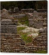 Olympia Ruins And Wild Flowers   #9684 Canvas Print
