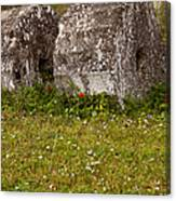Olympia Ruins And Wild Flowers   #9821 Canvas Print