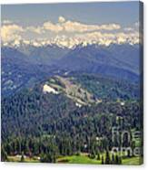 Olympic National Park Landscape Canvas Print