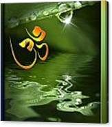 Om On Green With Dew Drop Canvas Print