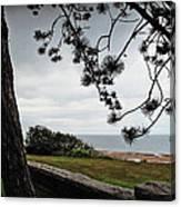Omaha Beach Under Trees Canvas Print