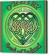 O'malley Soul Of Ireland Canvas Print