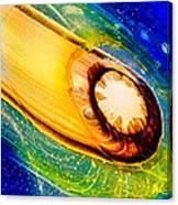Omaste's Comet Canvas Print