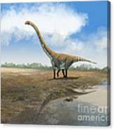 Omeisaurus Tianfuensis, An Euhelopus Canvas Print