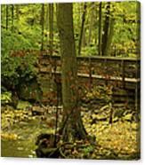 On An Autumn Walk Canvas Print