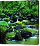On Golden Waters  Canvas Print