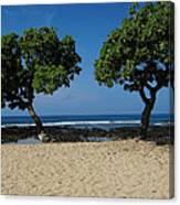On Hawaii's The Big Island Canvas Print