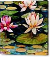 On Lily Pond Canvas Print
