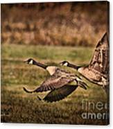 On Takeoff Canvas Print