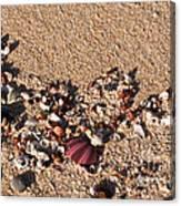 On The Beach 02 Canvas Print
