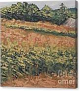 On The Cob Canvas Print