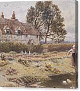 On The Common Hambledon Surrey Canvas Print