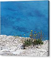 On The Edge Of Blue Canvas Print