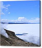 On The Edge Of Lake Yellowstone Canvas Print
