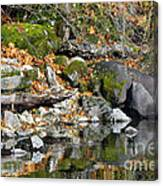 On The Edge Of The Lake Canvas Print