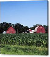 On The Farm In Belle Plaine Canvas Print
