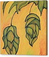 On The Hop Vine  Canvas Print