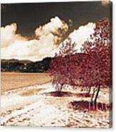 On The Lake Shore Canvas Print