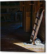 On The Loading Dock Canvas Print