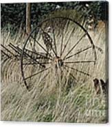 On The Old Farm Canvas Print