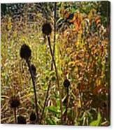 On The Prairie #4 Canvas Print