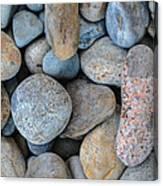 On The Rocks Canvas Print
