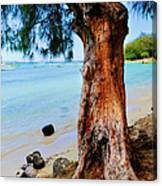 On The Shore 1. Mauritius Canvas Print