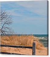 On The Shore Canvas Print