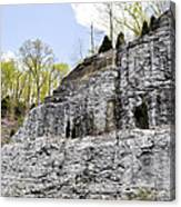 On The Side Of The Mountain Canvas Print
