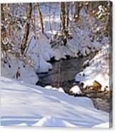 On The Thaw Canvas Print