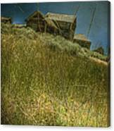 On The Top Of Grassy Hill Canvas Print