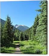 On The Trail Around Lightning Lake Canvas Print