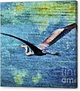 On The Wings Of Blue Canvas Print