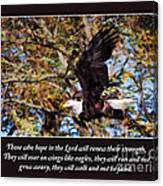 On Wings Of Eagles -in Brown Canvas Print