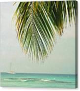 On Your Horizon  Canvas Print