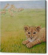Once There Was A Lion Named Leo Canvas Print