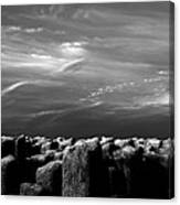 Once There Was A Place Canvas Print