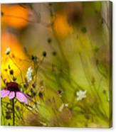Once Upon A Time There Lived A Flower Canvas Print